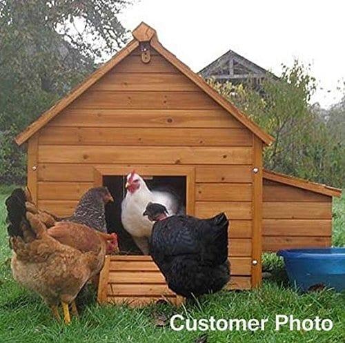 House L 8 Bird Coop